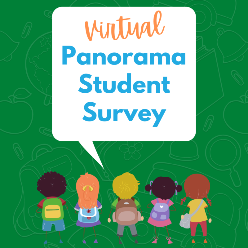 Virtual Panorama Student Survey
