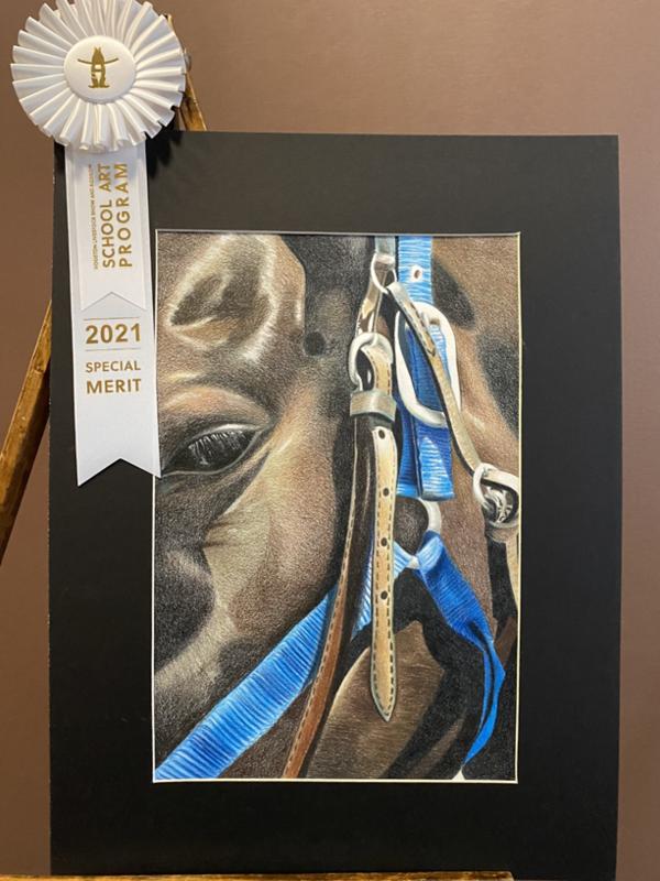 Ying Liang Houston Livestock Show Art