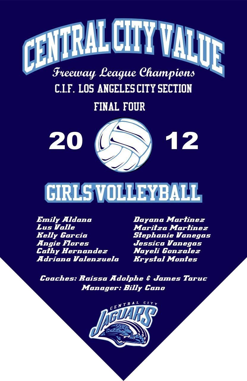 2012 Girls Volleyball Final Four Banner