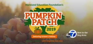 MEF pumpkin patch image