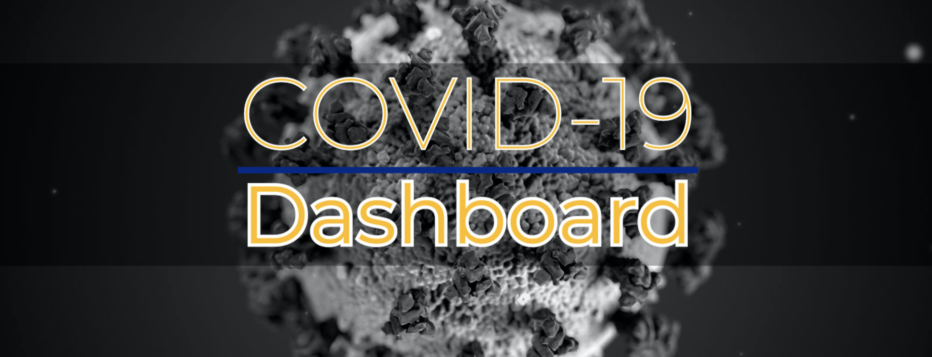 COVID19DSSHBOARD