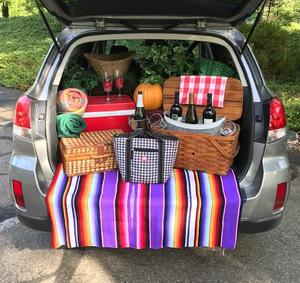 picnic in the back of the car