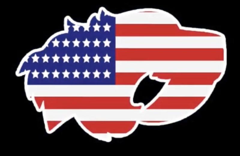 rebcat flag