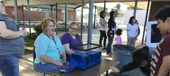 Harvest Fair - Students and Families Learn to Eat Healthy and  Be Healthy