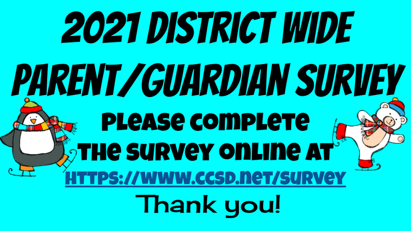 2021 District Wide Parent/Guardian Survey Thumbnail Image