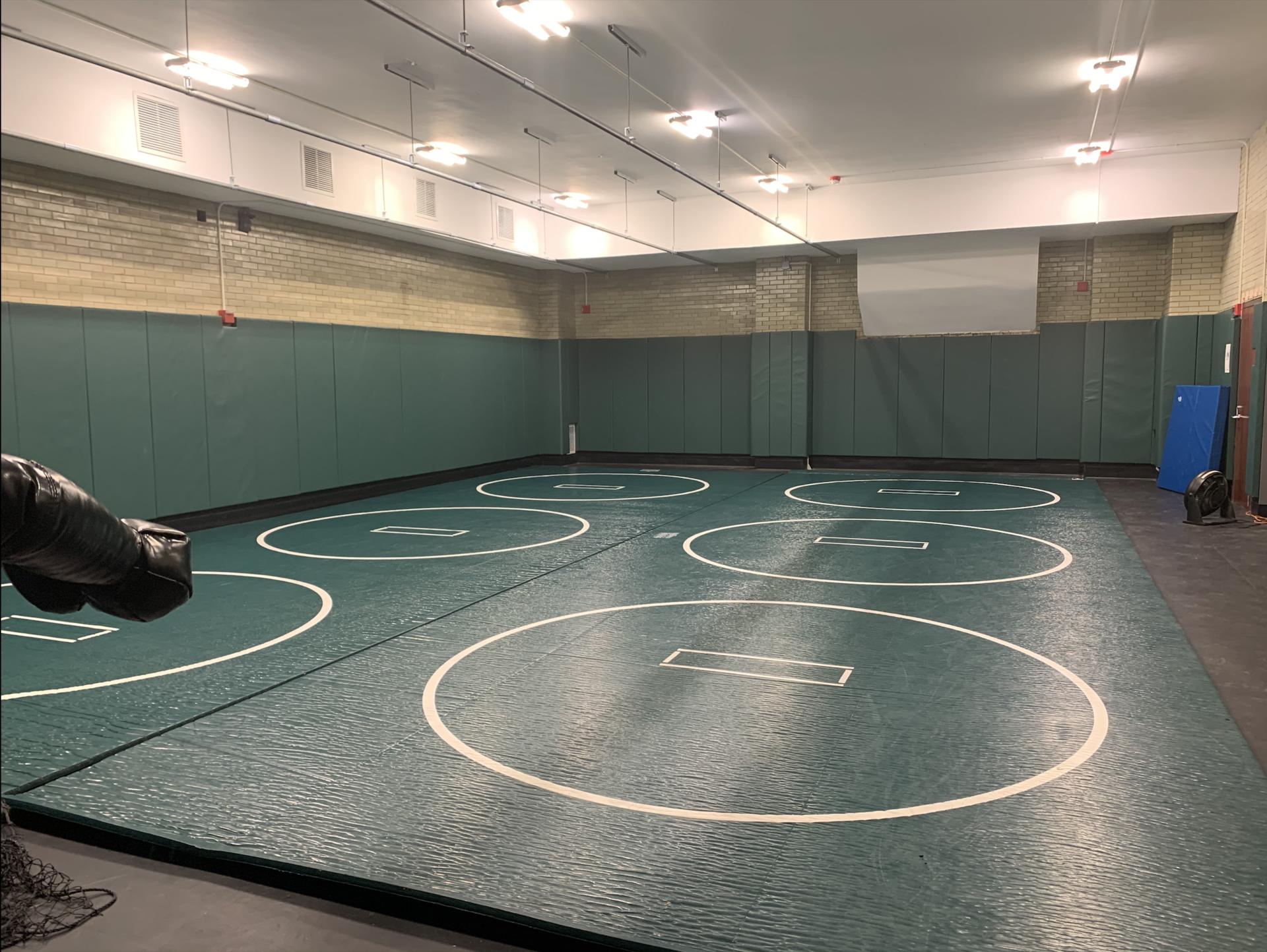 Wrestling Room/Hitting Cage