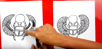 drawing a scarab beetle