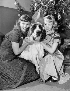 #ThrowbackThursday:Image of 2 female students hugging a large Saint Bernard dog