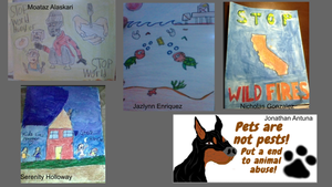 posters created by students for their social issues project.