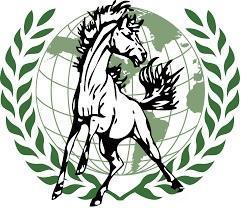 MCHS MUN Logo
