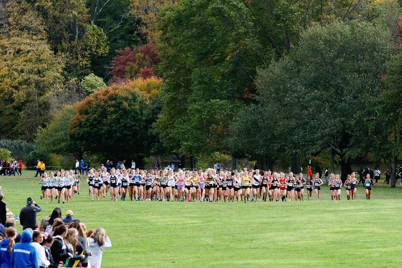 Cross Country Groups