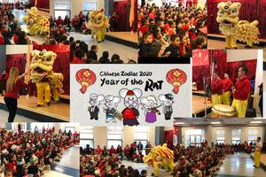 Collage of Chinese Dragon and the live performers dancing