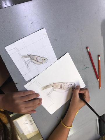 Art students depict birds of Iowa Thumbnail Image