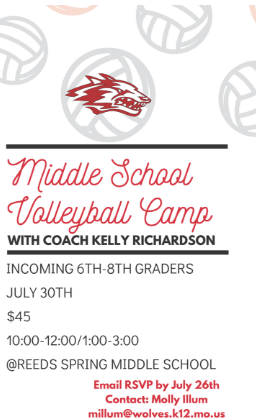 flyer for volleyball camp