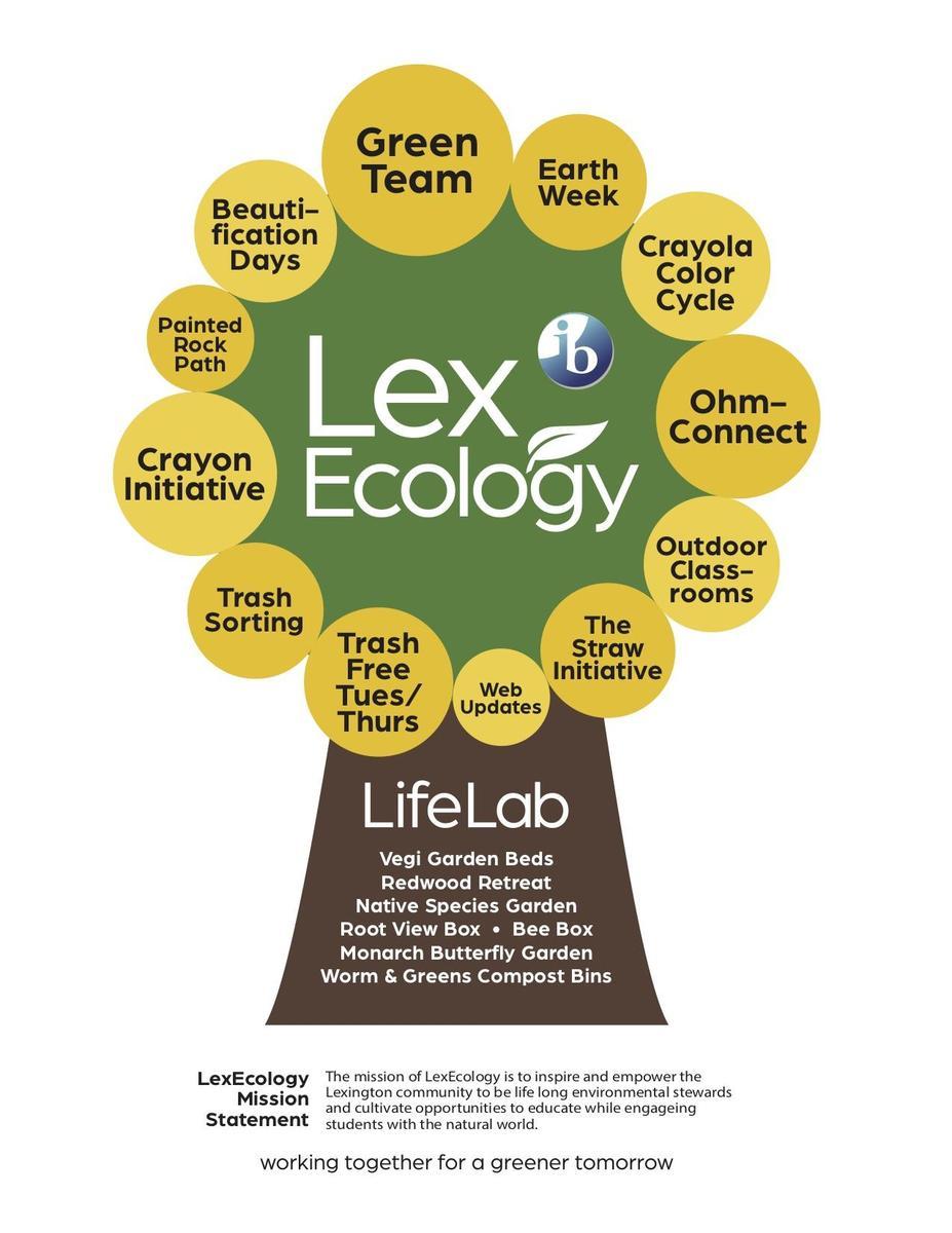 lexecology