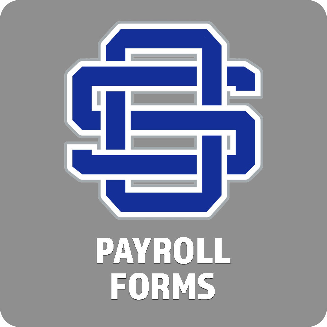 Payroll Forms Icon