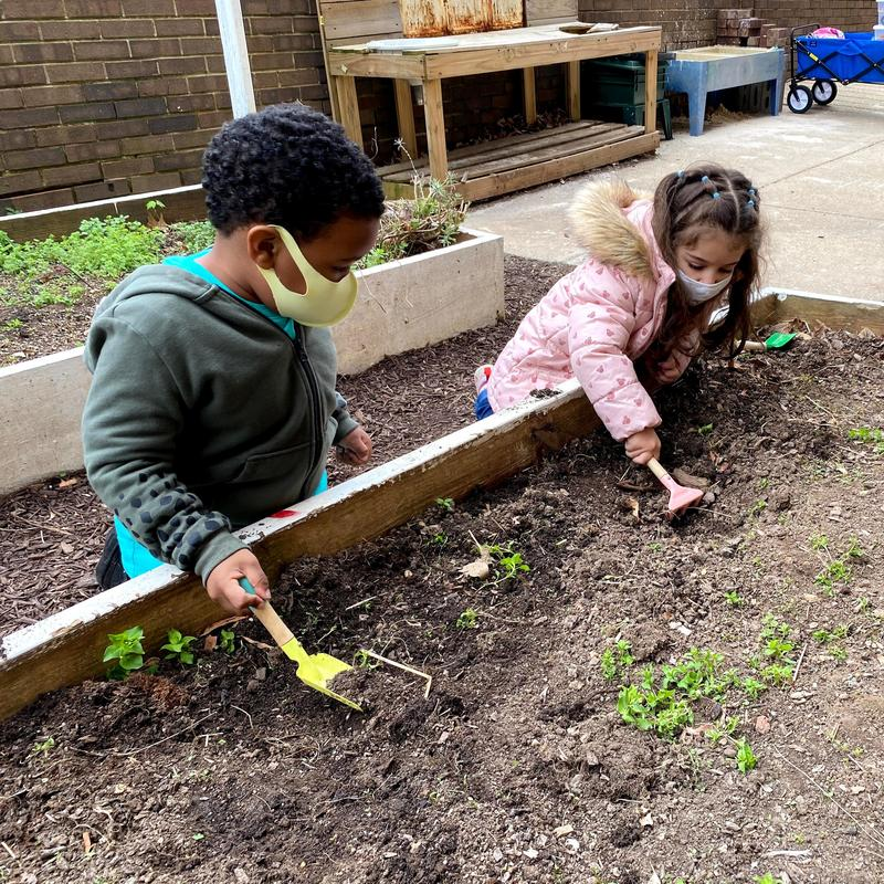 Gardening is a Revolutionary Act Featured Photo