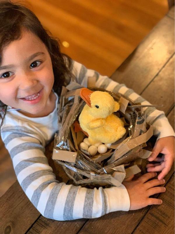 Preschool bird nests Featured Photo