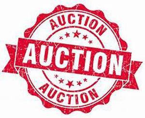 Auction 5x3.jpg