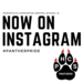 Now on Instagram with Paw print