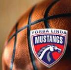 Mustang Basketball logo