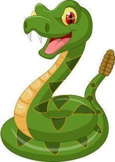 Middle School Snake graphic