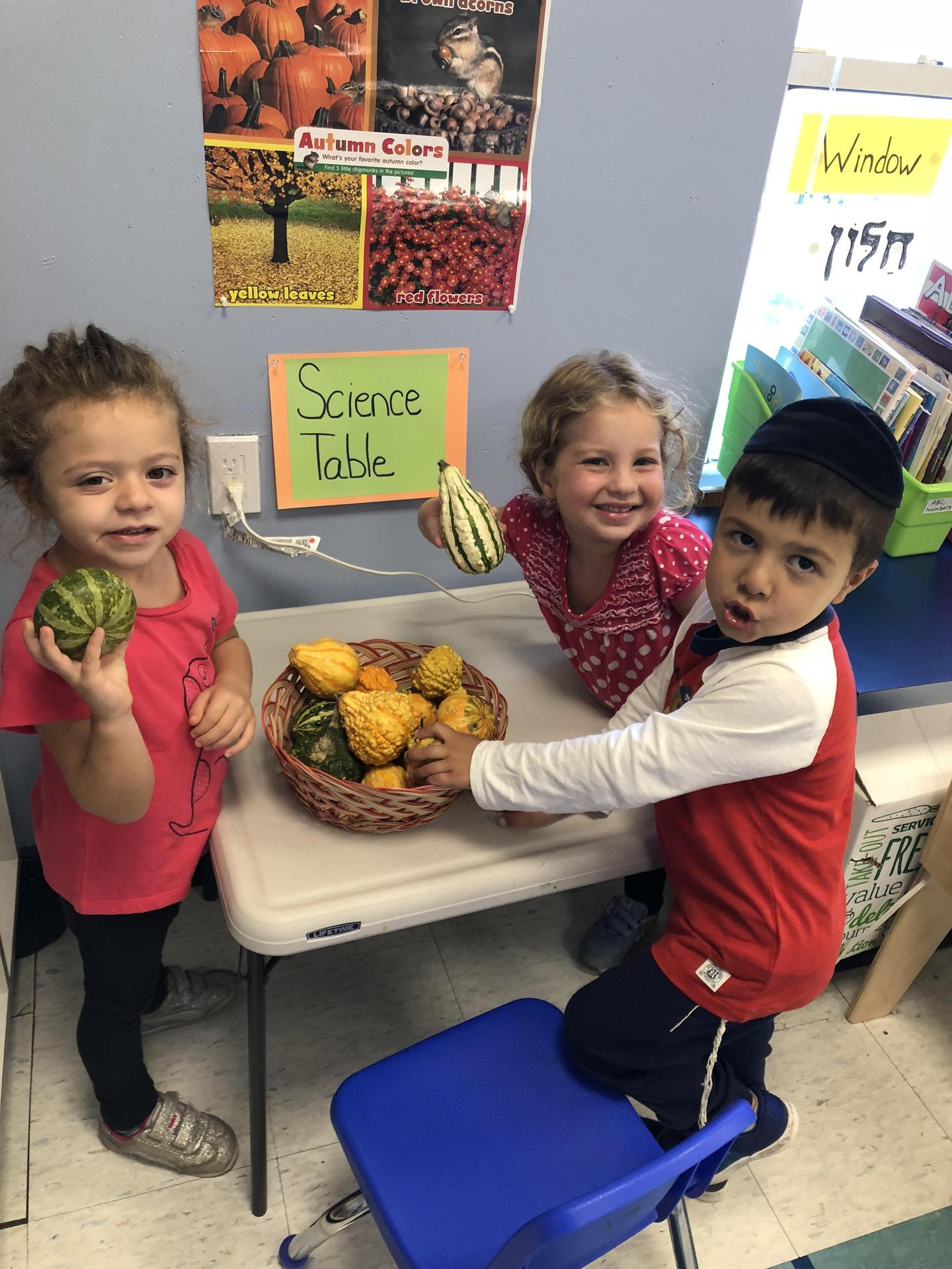 Enriching Early Childhood Experiences >> Early Childhood Early Childhood Hebrew Academy Of Five