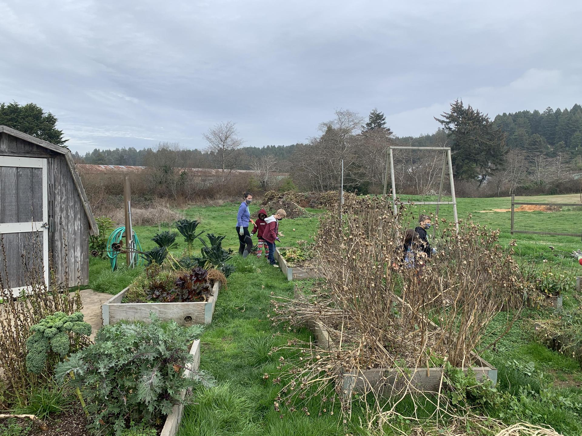 working on school garden