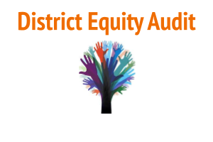 District Equity Audit Logo