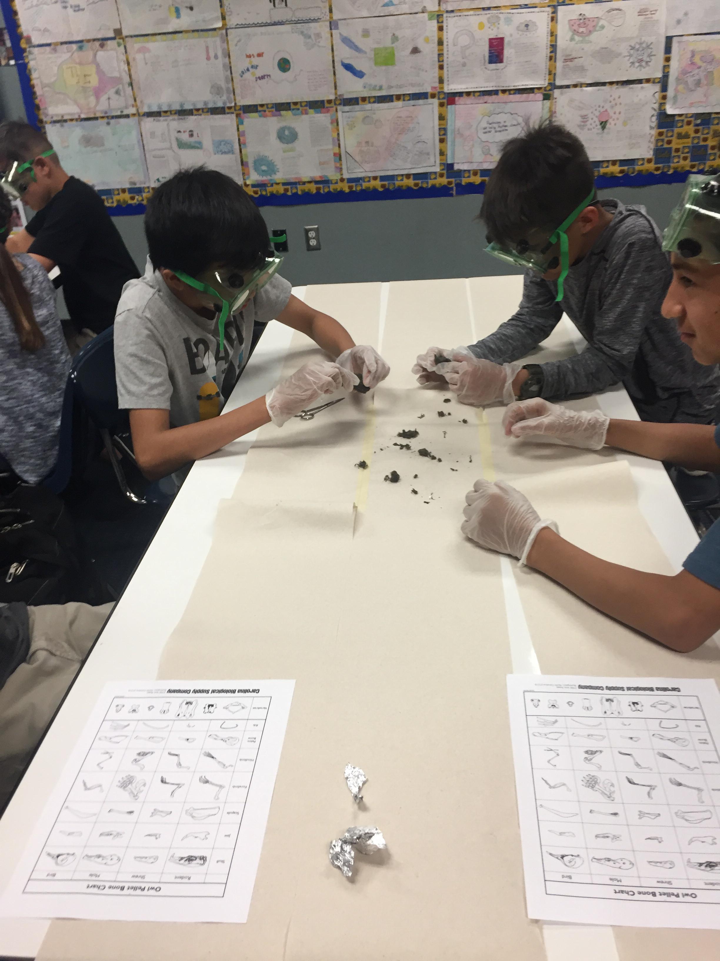 Mrs  Taylor's 6th Grade Math and Science Class – Mrs  Tamara