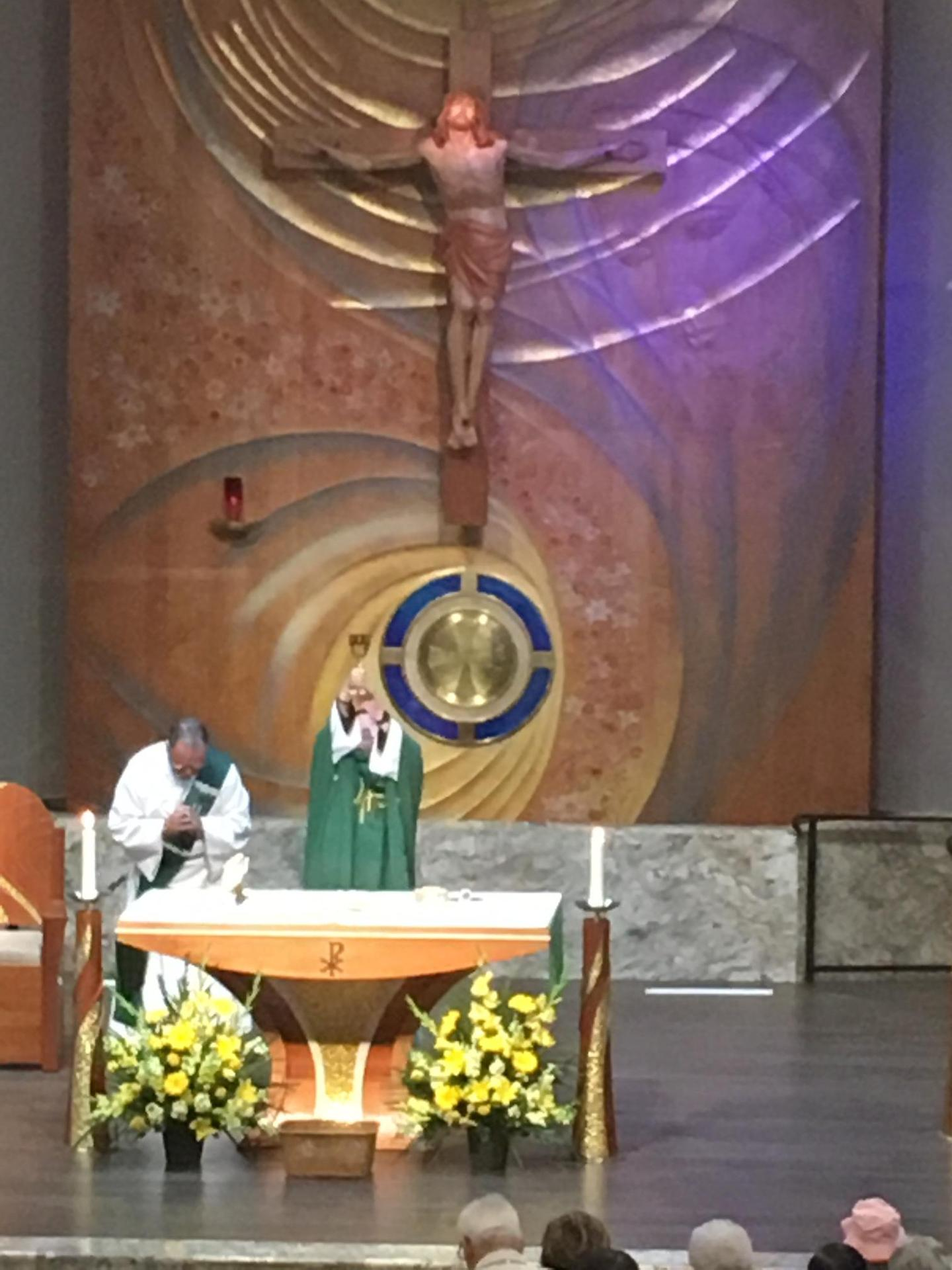 Mass & Confession Times – Mass & Confessions – Our Lady of