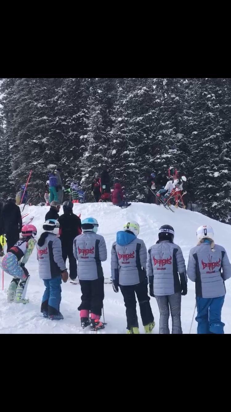 DHS Ski Team