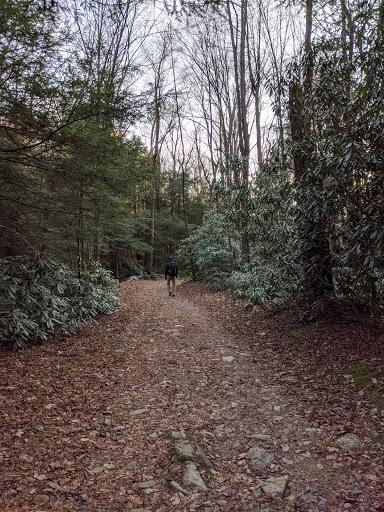 trails3 photo