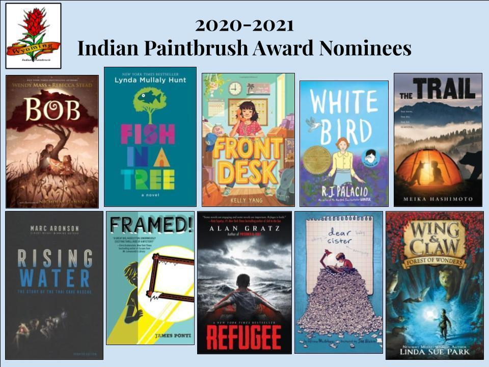 Indian Painbrush book covers