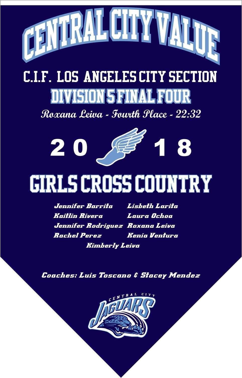 2018 Girls Cross Country Final Four Banner