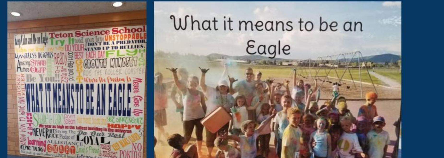 What it means to be an Eagle Project