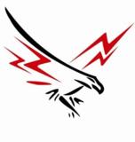 Falcons 2019-2020