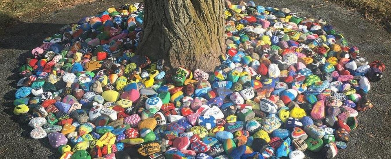 Student-painted rocks around base of tree