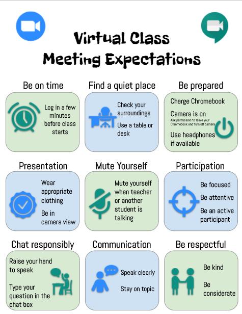 Virtual Class Meeting Expectations