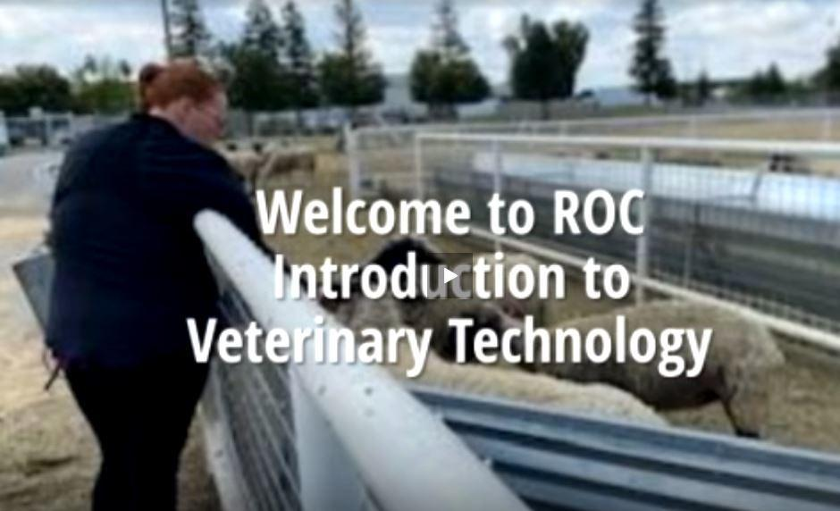 Welcome to Vet Tech 2020-2021