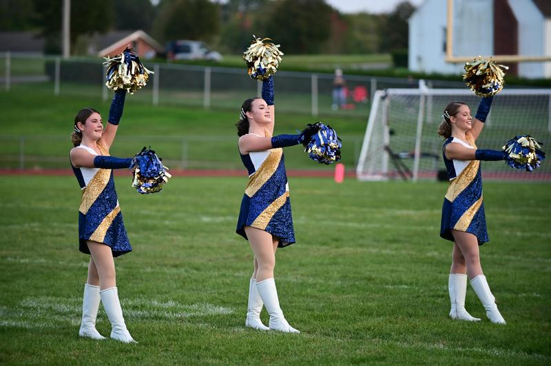 pic of girls performing on football field