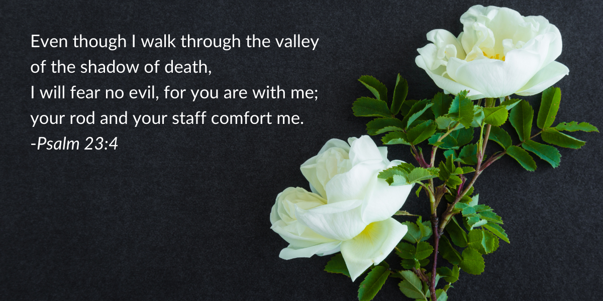 Psalm 23:4 graphic