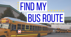 Find my bus route image of school buses lined up
