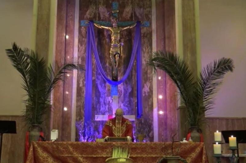 Palm Sunday Video Mass Featured Photo