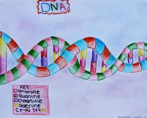 DNA IMG_0452.jpg