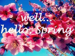 301106-Well...hello-Spring.jpg