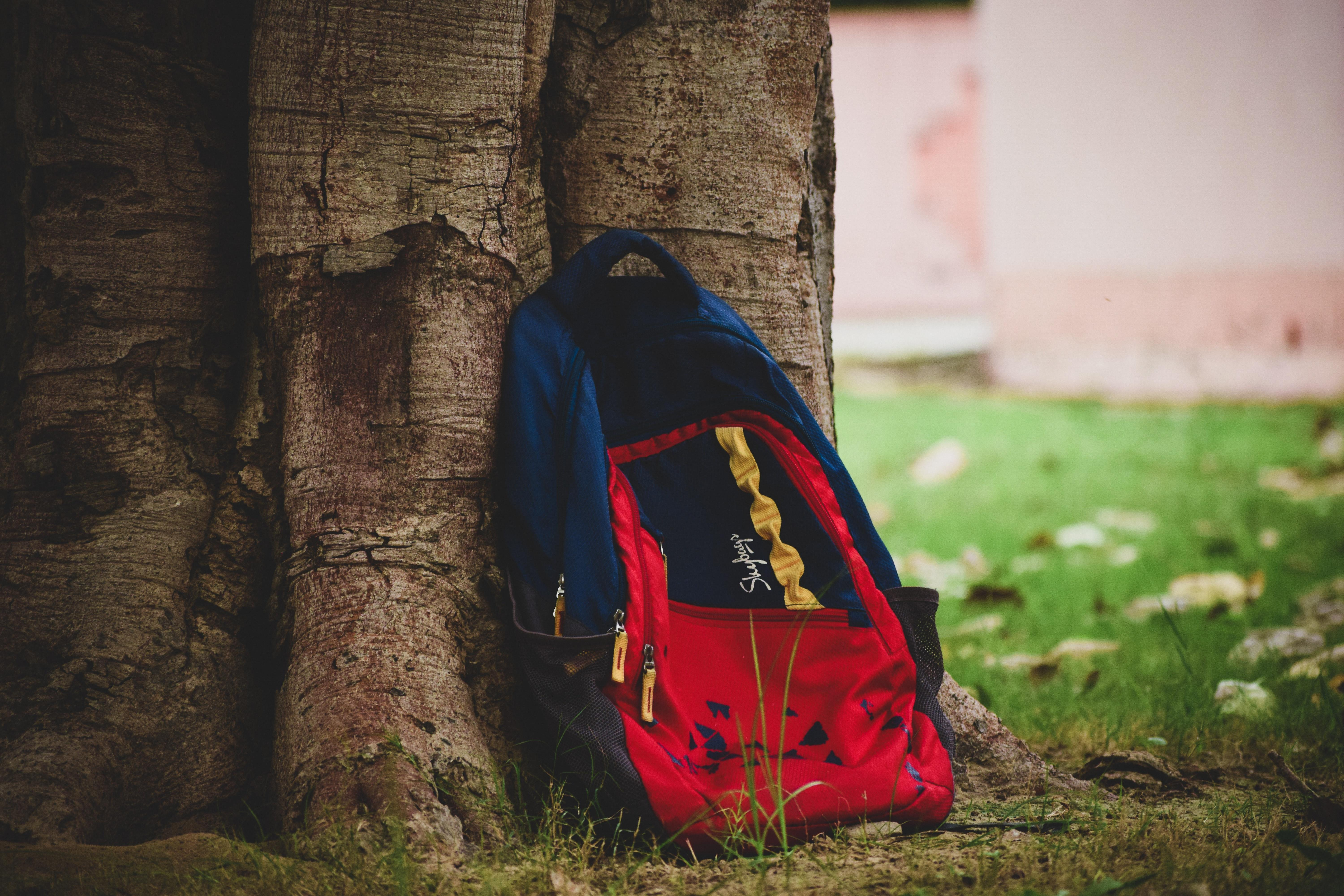 red and blue backpack leaning against tree trunk