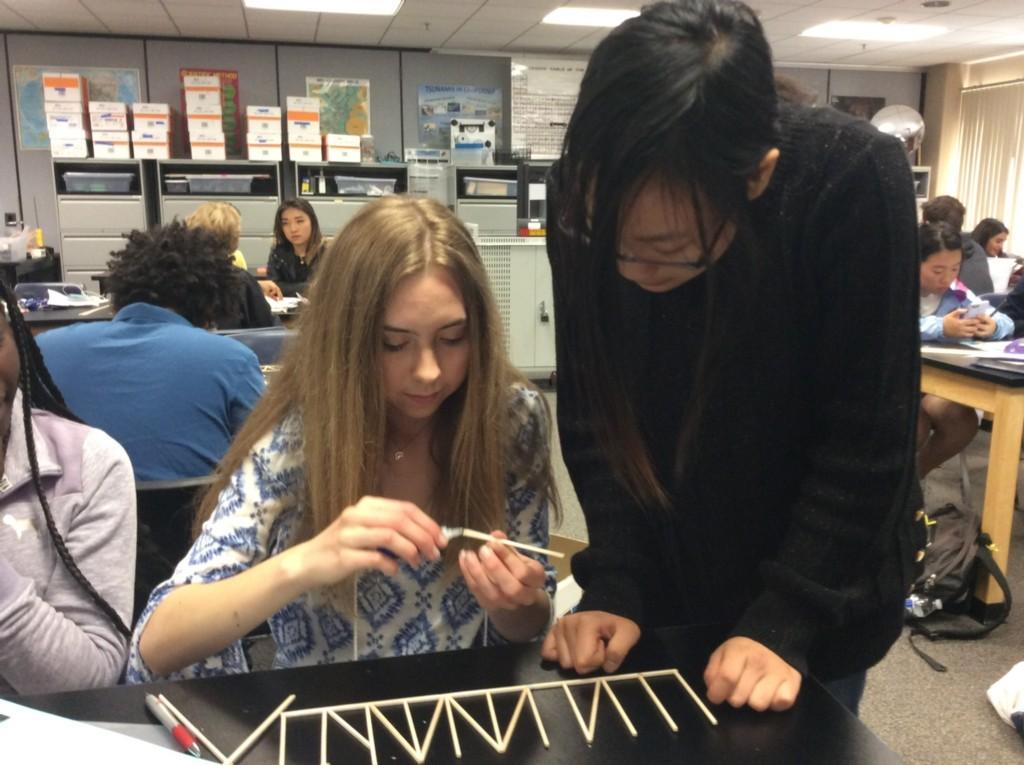 Bridge Building in Physics