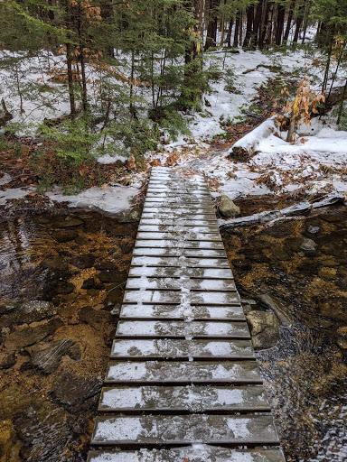 trail2 photo