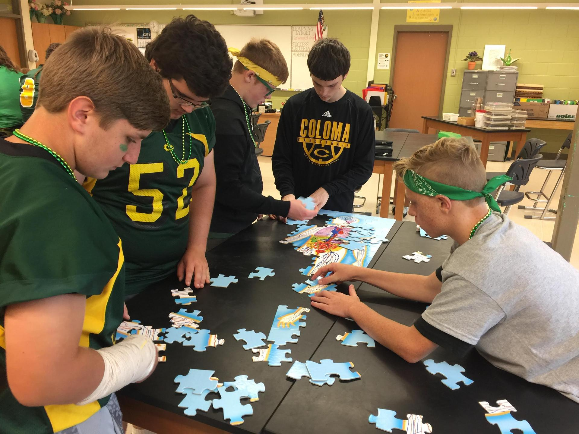 Puzzling times in biology class!
